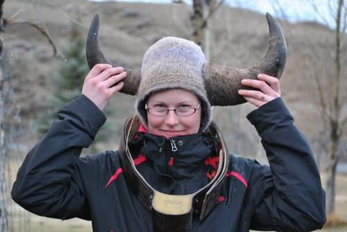 One of my colleagues illustrating the difference between cow (left) and bull (right) bison horns.  She also sports a radio transmitter used to track an individual bison across the park.