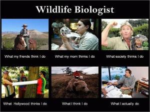 wildlife bio