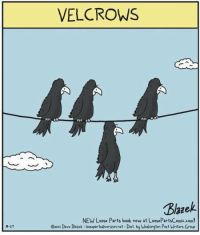 Velcrows